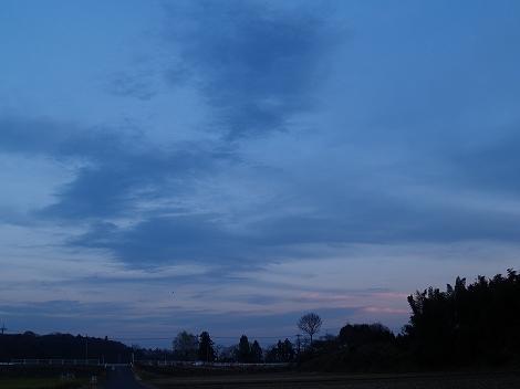 2010121103.jpg