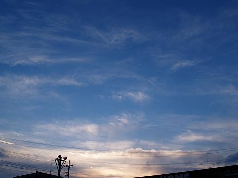 2010121105.jpg