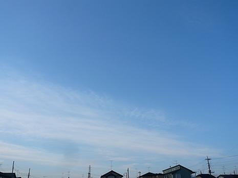 20101219lumix.jpg