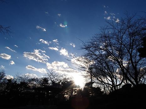 2010122303.jpg