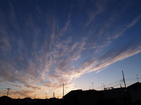 2011010108.jpg