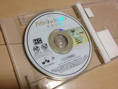 2011120301.jpg